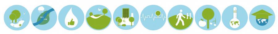 ecosysteemdiensten